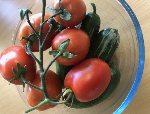 Dagboek van 2 uitgevers – tomaat, komkommer en spierballen